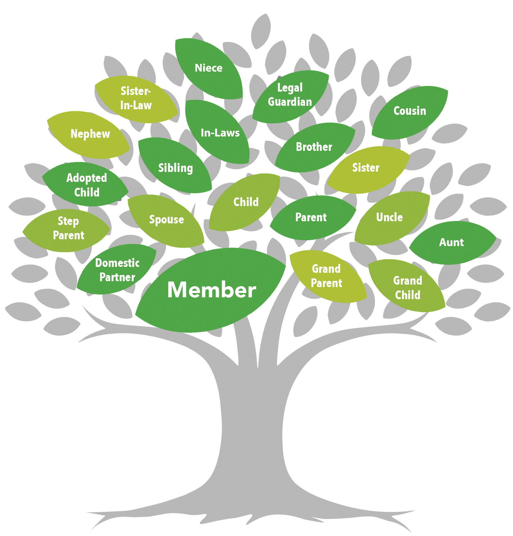 Veritas FCU Membership Family Tree